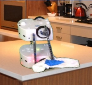 Robot Mega Maid